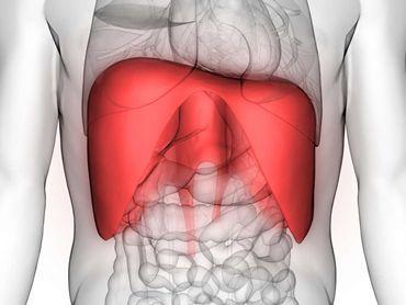 https://cdn-prod.medicalnewstoday.com/content/images/hero/322/322035/322035_1100.jpg